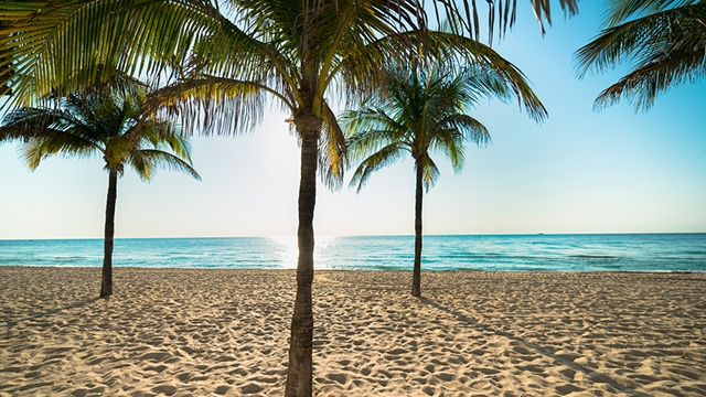 Beautiful Fort Lauderdale BeachJet charter Fort Lauderdale